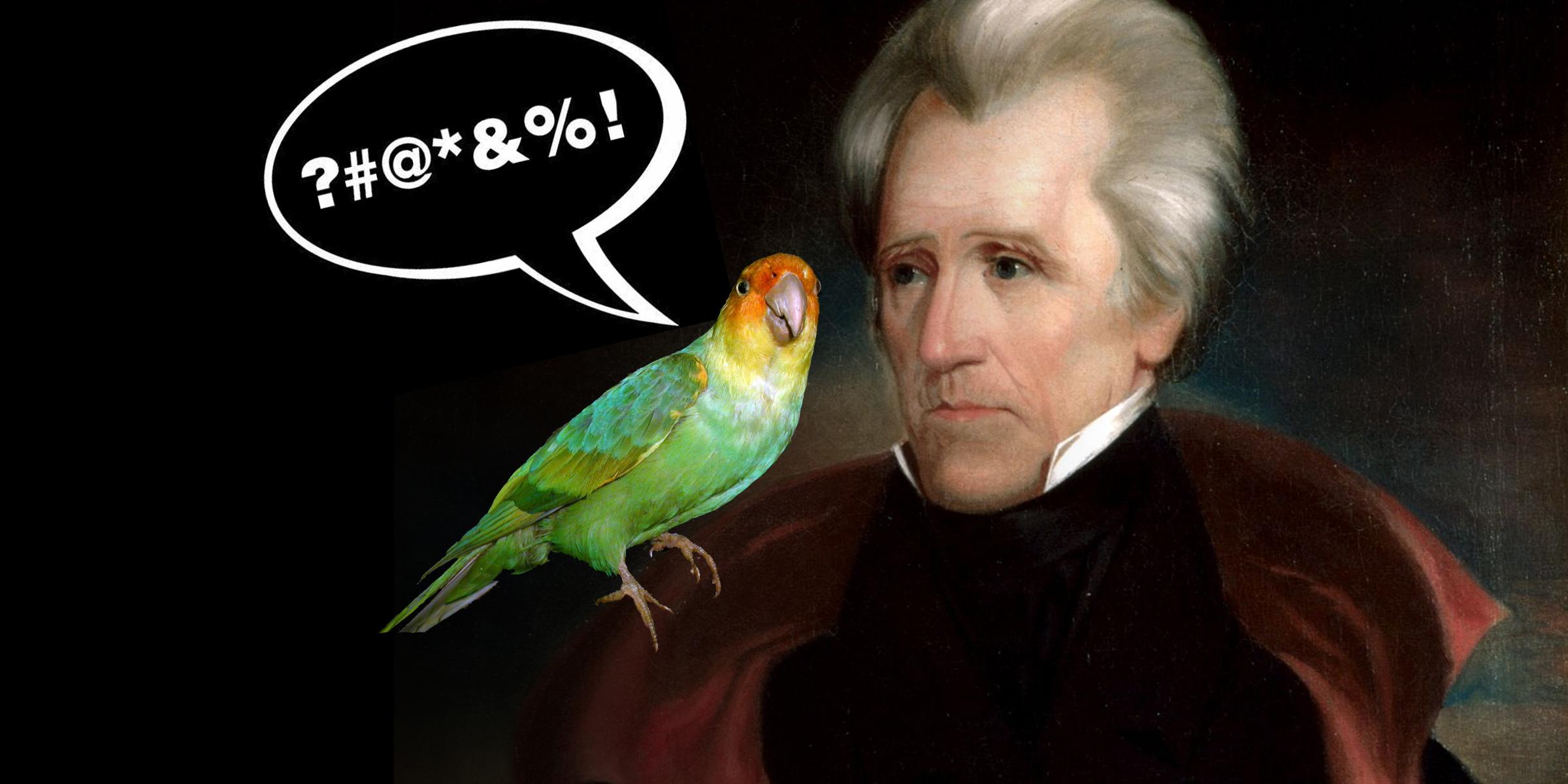 Andrew Jackson's Cursing Parrot